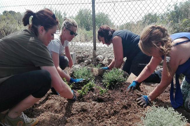 treballadors als jardins la muntanyeta
