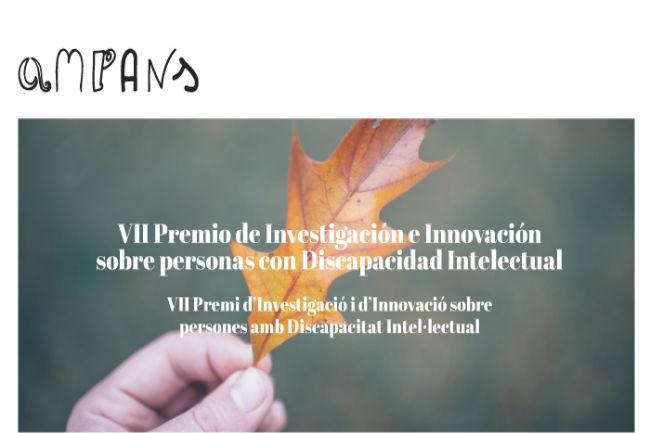 premi ampans convoca investigació recerca discapacitat