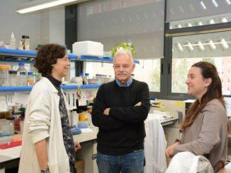 equip investigadors ub síndrome d'Opitz