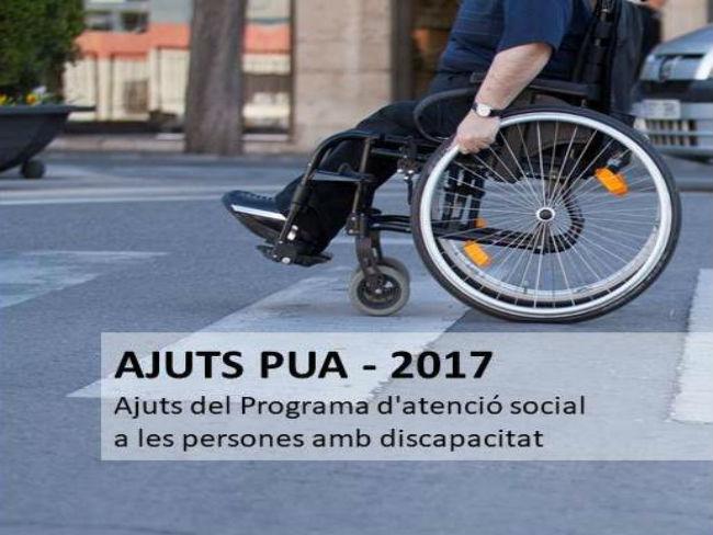 ajuts pua atenció social persones discapacitat pua 2017