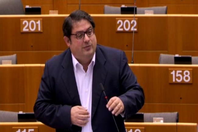 gambús invervenció estratègia europea discapacitat dependència