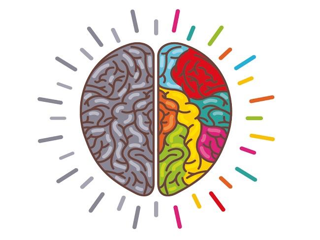 """LA FAFAC engega la campanya de prevenció de la salut cerebral """"Cuida el teu cervell"""""""