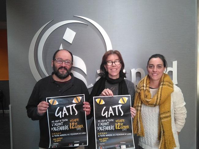 Presentació Musical Gats
