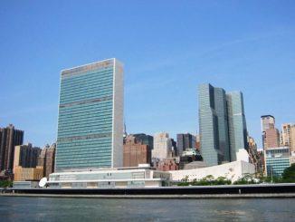 seu-onu-nova-york-declaració-drets-dones-discapacitat