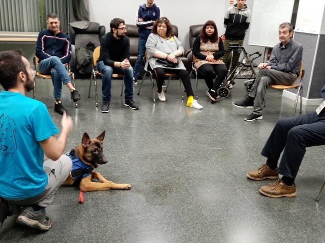 ASPID posa en marxa dos tallers terapèutics  d'educació canina i de dansa i música